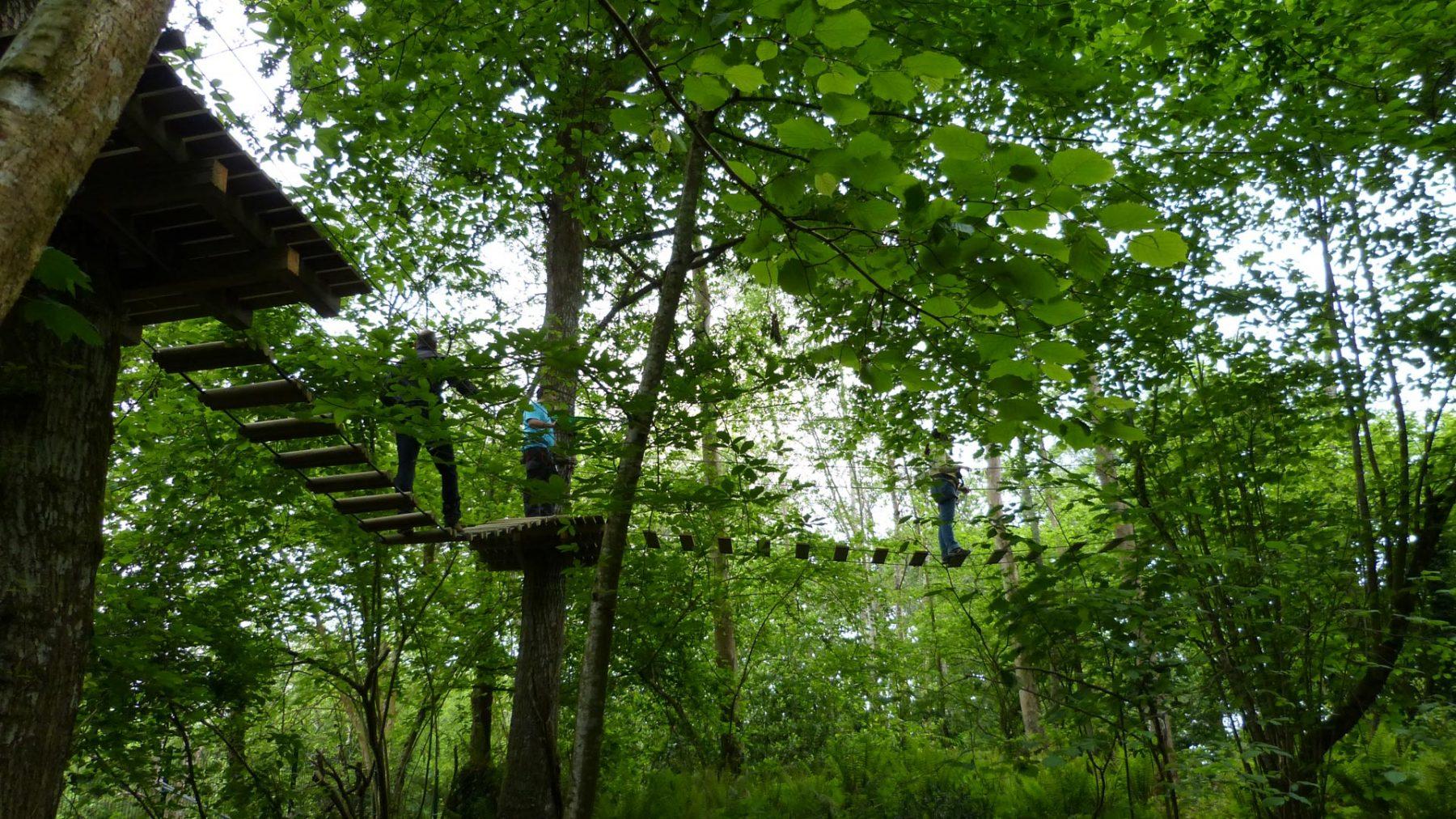 Doble puente al inicio de selva asturiana