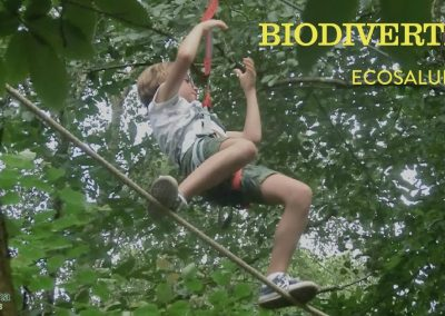 selva biodivertida